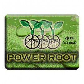 IPP Power Root Gel 500ml^