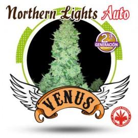 Venus Genetics - Northerm Light Auto (5f)