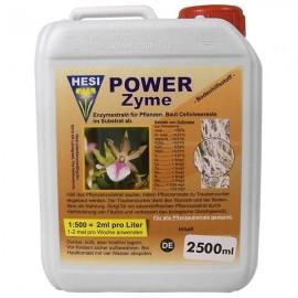 Power Zyme 2,5L (Hesi)^