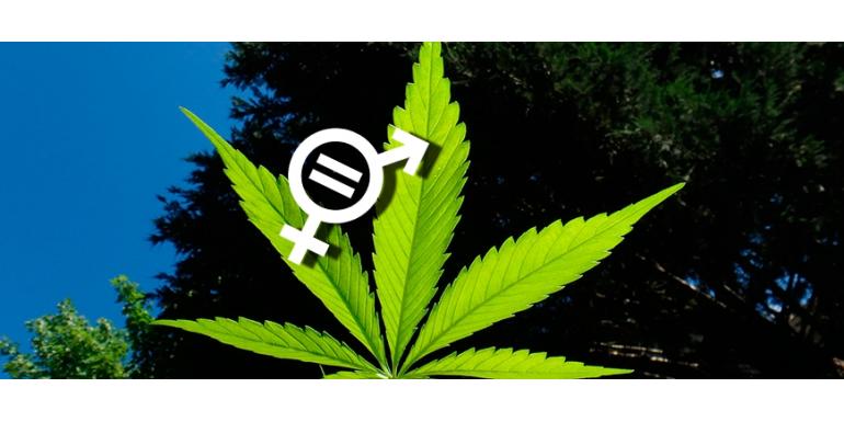 La sexualidad de tus plantas